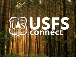 Designing with the US Forest Service